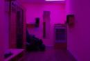 Studio v purpuru